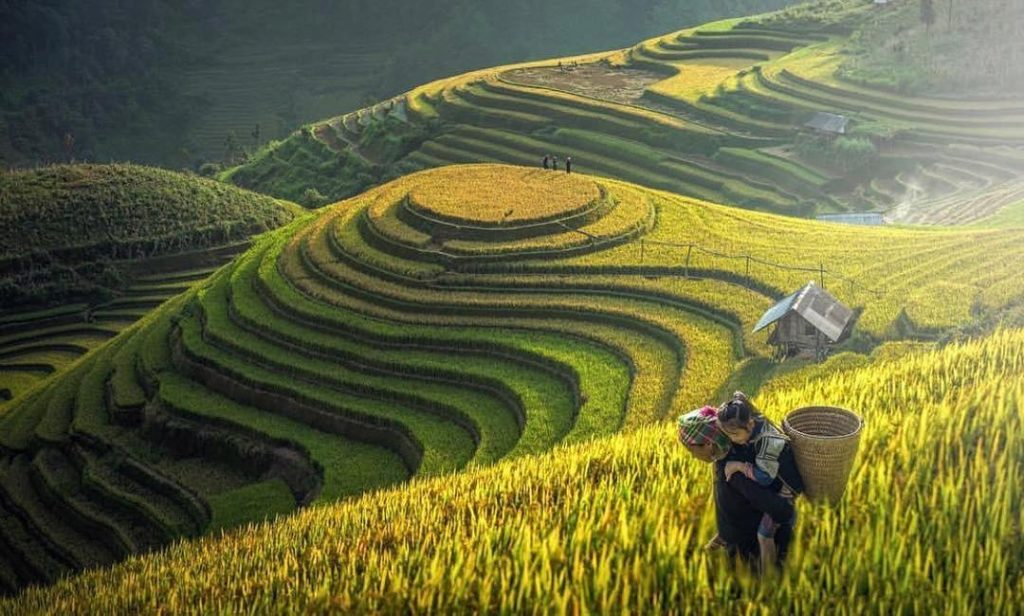 7 Reasons to visit Vietnam in 2020 - The Culture