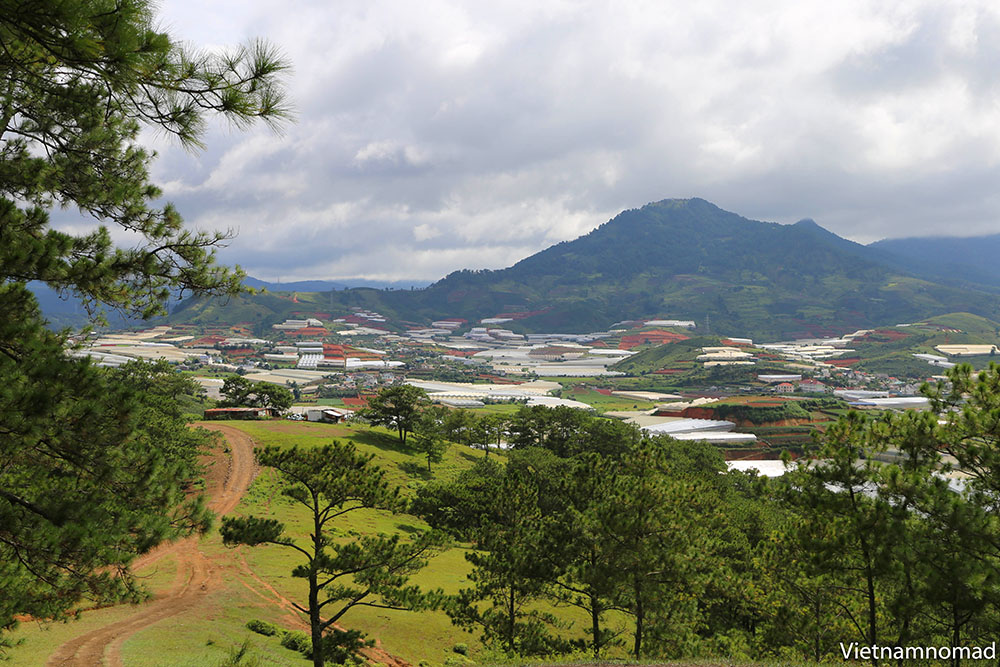 Dalat is one of the few cities in Vietnam you can visit at any time